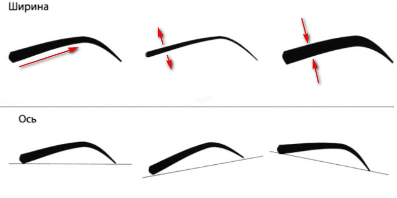 Стоимость пересадки бровей - Смена формы и дизайна