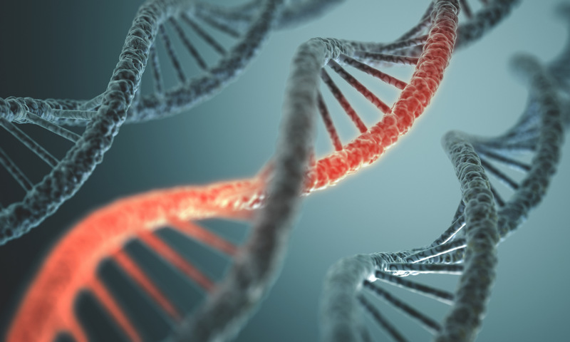 генетическая алопеция